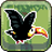 Toucan Dan 1.0.0 APK