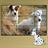 dogspuzzleforkids 1.0.0 APK