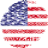 Independence Day Fireworks icon