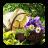 DIY Gardening Tips 6.0 APK