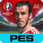 PES COLLECTION 1.1.13