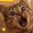 Cat Sounds 1.0.4