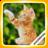 PuzzleBoss: Cute Cats Jigsaw Puzzles 1.8.9 APK