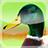 Ducks 3D Live Wallpaper FREE 1.5.1