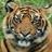 Free Tiger HD Live Wallpaper 1.0