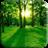 Green Forest 1.2 APK