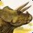 Hello Dinos icon