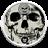GO Locker Rose Skull Theme 2.0