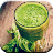 10 Green Detox Drinks 1.0 APK