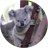Baby Animal HD Wallapaper 1.3 APK