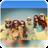 Insta Blur icon