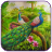 Peacock Beauty Pics 1.0 APK