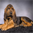 Bloodhounds Wallpapers 1.0