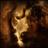 Lion King HD Live Wallpaper Free 1.0 APK