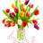 Colorful Tulips Live Wallpaper 1.1 APK