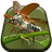 Flying Beetle Live Wallpaper 1.0 APK