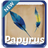 Papyrus Keyboard icon