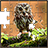 Jigsaw Puzzles Owls icon