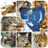 Puzzle Chat Animal Planet 3.4