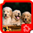 Dogs Puzzles 1.4.0 APK