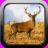 Deer Hunter 1.0