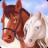 Horse Quest Online 1.61 APK