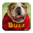 Wallpapers of Bulldogs 1.0.3