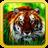 Wild Tigers 1.01 APK