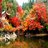 Autumn in Japan Wallpapers HD 3.0.0
