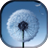 Magic Neo Wave : Dandelion LWP icon