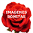 IMAGENES BONITAS 1 1.0 APK
