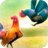 Wild Rooster Run 2.11.8 APK