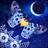 Flutter: Starlight 1.38 APK