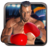Real 3D Boxing Punch 2.1 APK