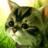 Kitty Quest 0.84 APK