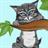 Cat Flip 1.1