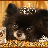 3D Puppy Cruise Slots 1.0